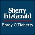 Property Partners Brady (Maynooth)
