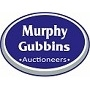 Murphy Gubbins Chartered Surveyors