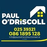 Paul O'Driscoll