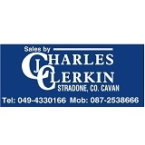 Charles J. Clerkin Auctioneers