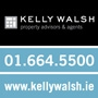 Kelly Walsh