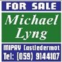 Michael Lyng & Co