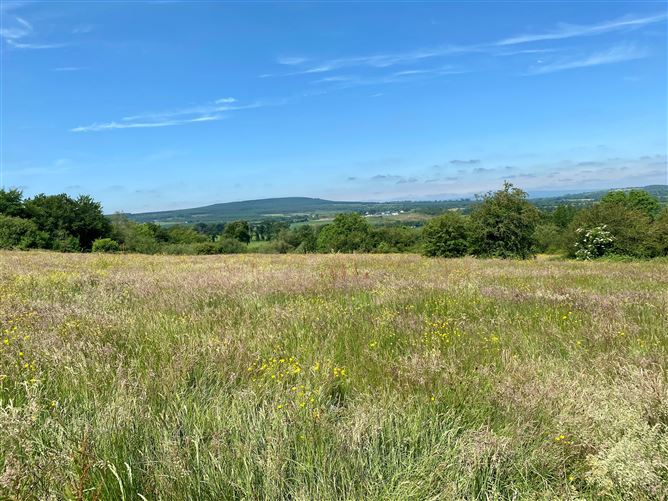 Main image for c. 55 Acres at Fossy Upper, Timahoe, Laois