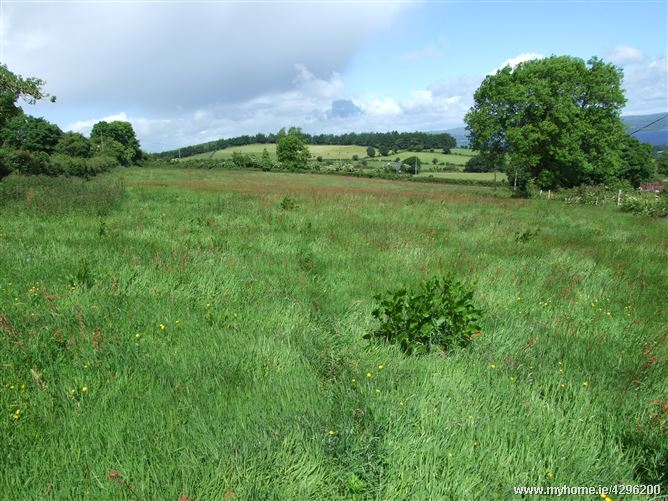 Main image for Clooneen, Loughtae, Portroe, Tipperary