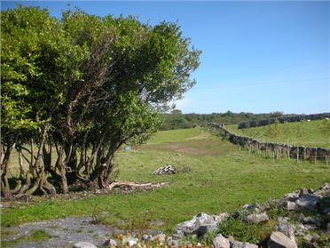 Photo of Drumsheel, Cong, Co. Galway