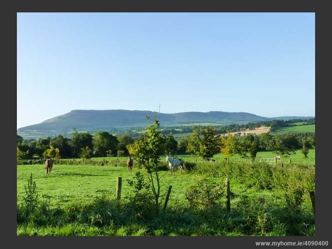 Main image for Daffodill Cottage,Daffodill Cottage, Toberpatrick, Tinahealy, County Wicklow, ., Ireland