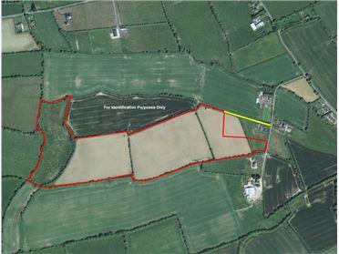 Main image of Loughanstown, Rathfeigh, Navan, Meath