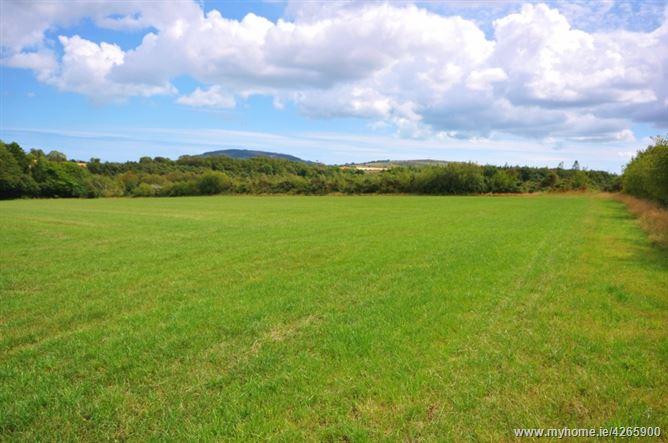 1160 Hectares 29 Acres At Ballinastreagh Gorey Wexford