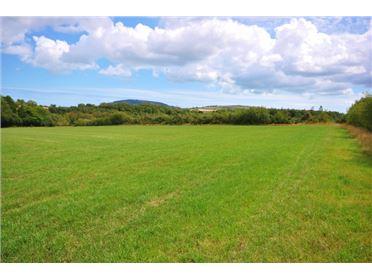 Main image of 11.60 Hectares / 29 Acres at Ballinastreagh, Gorey, Wexford