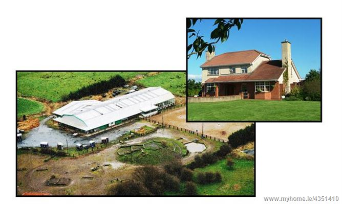 Main image for Residence & Former Equestrian Centre, City Centre (Limerick), Limerick