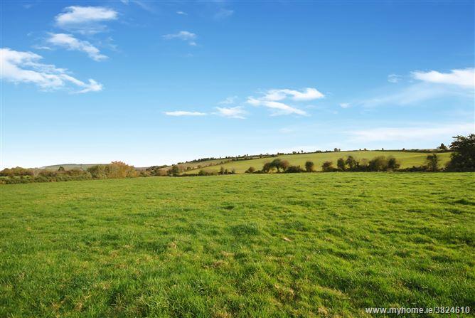 Baltyfarrell, Gorey, Wexford