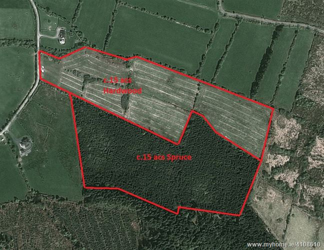 c30 ac sm Forestry Lands, Russellstown, Clonmel, Tipperary
