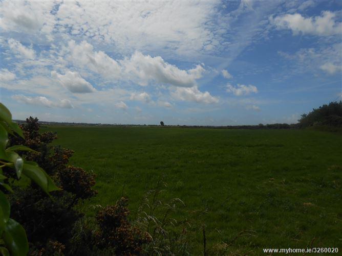 Castleellis, Enniscorthy, Wexford