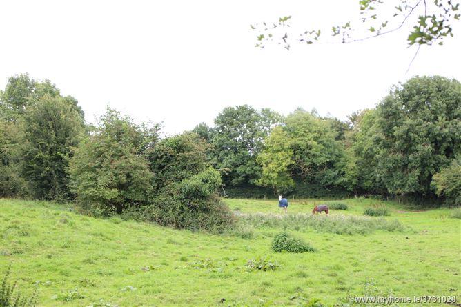 Kilfoylan, Moate, Westmeath