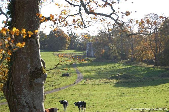 Ballykilty Manor, Quin, Co Clare