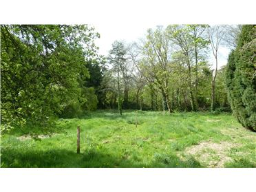 Photo of Site At Brighton Road, Foxrock, Dublin 18