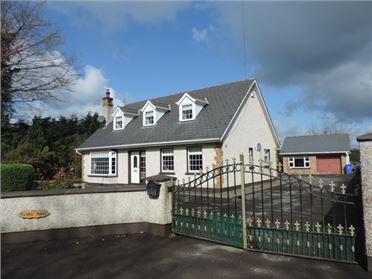 Photo of Tadhg Beag, Ballysax, Curragh, Kildare