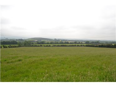 Photo of Pluckstown, Straffan, Co. Kildare - approx. 41 acres