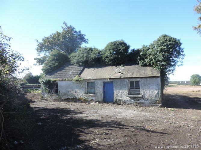 Mountrice, Monasterevin, Kildare