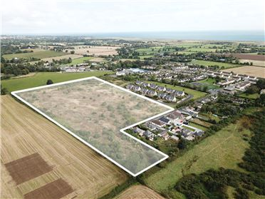 Main image of 4.69 Ha at Racefield & 3.51 Ha at Sea Road, Newcastle, Wicklow