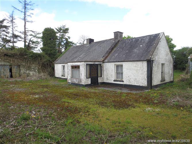 Moorefield, Eyrecourt, Galway
