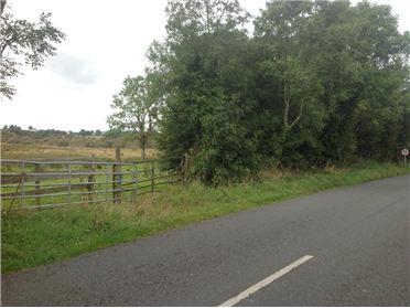 Main image of Clonkeiffy, Ballyjamesduff, Co. Cavan