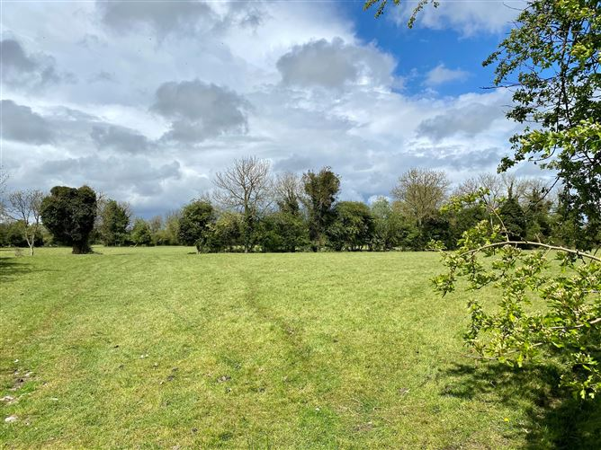 Main image for 13 Acres, Castlekeely, Caragh, Naas, Kildare