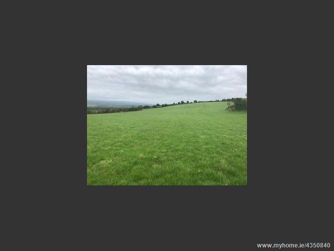 Main image for Ballyring Lower, Lisdowney, Kilkenny