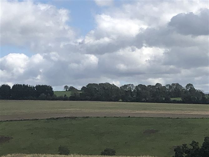 Main image for c. 41 Acres, Crookstown Upper, Ballitore, Athy, Kildare