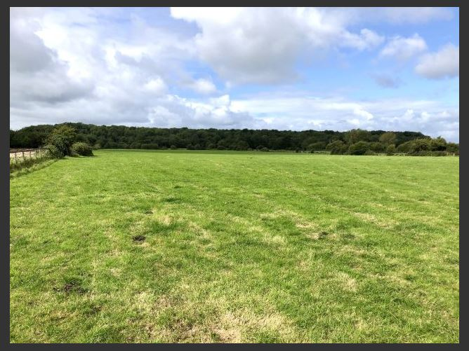 Main image for c. 14.5 Acres at Coolnabacky, Timahoe, Laois