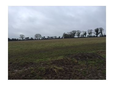 Main image of Stacumney, Celbridge, Co.Kildare -land approx 11acres