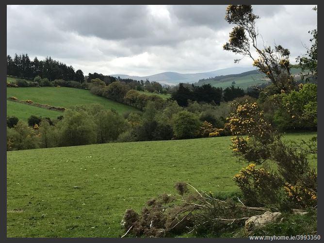 26 acres, Ballycrean, Aughrim, Wicklow
