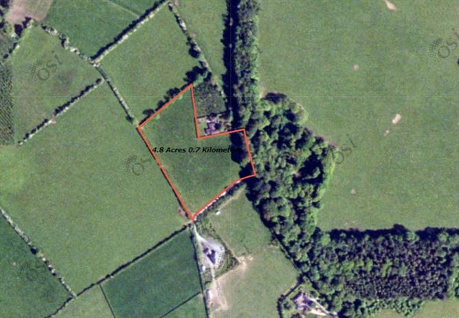 Main image for Site at Gilltown, Co. Kildare approx. 1.94 hectares (4.8 acres) , Co. Kildare,  W91 F1C6