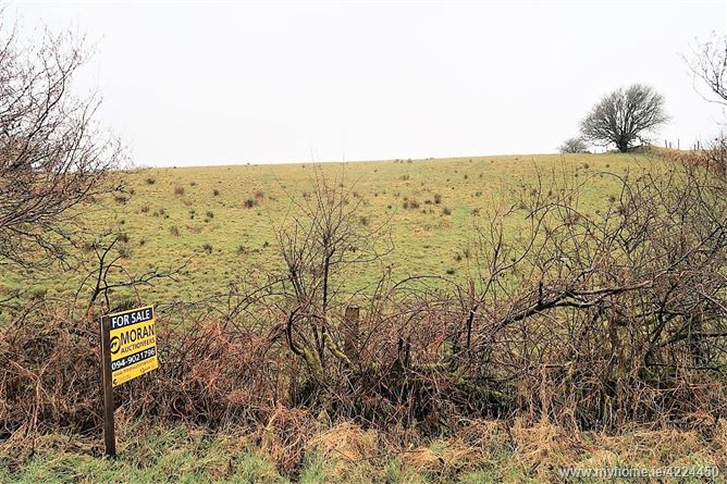 Main image for 10 acres of land for sale by Private Treaty ,Knockaneden, Ballynamarroge, Islandeady , Castlebar, Mayo