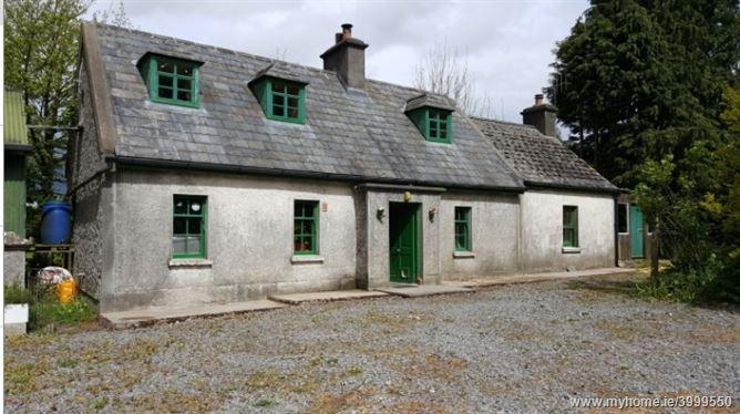 Walltown,Shanakill, Roscrea, Tipperary