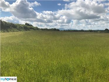 Photo of c. 7.75 acres, Killerig, Carlow, Carlow Town, Co. Carlow