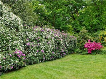 Main image of Garden House,Lyndhurst, Hampshire, United Kingdom