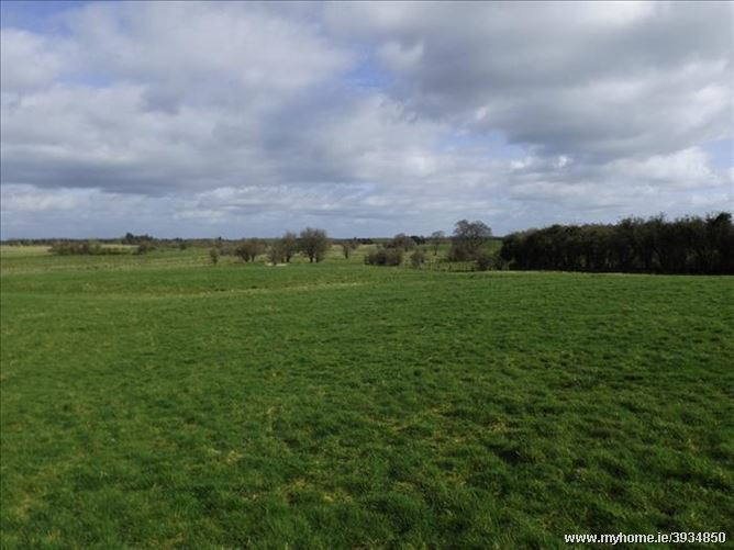Rickardstown, Collinstown, Westmeath