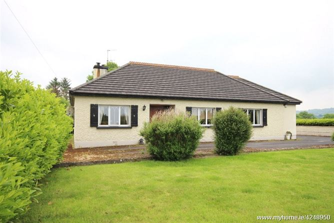 Monsea, Ballycommon, Nenagh, Co. Tipperary, E45C446