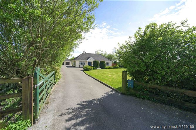 Main image for Meadow Croft Stables, Killowen, Rhode, Co. Offaly, R35 KP57