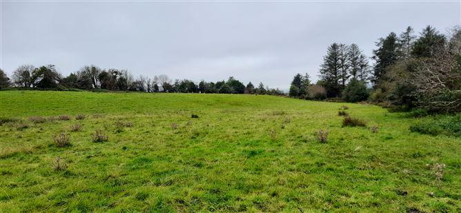 Main image for Derrynacaheragh, Dunmanway, West Cork