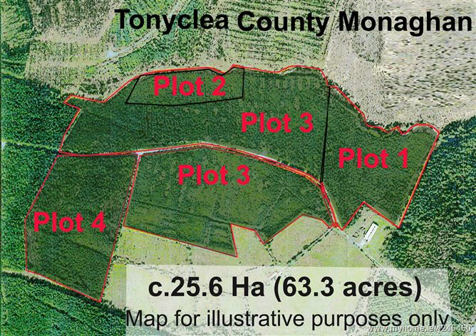 Main image for Tonyclea Forestry, Tydavnet, Monaghan