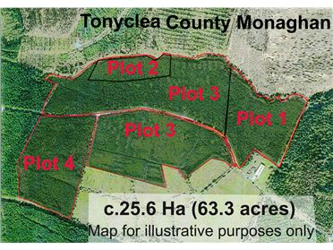 Photo of Tonyclea Forestry, Tydavnet, Monaghan