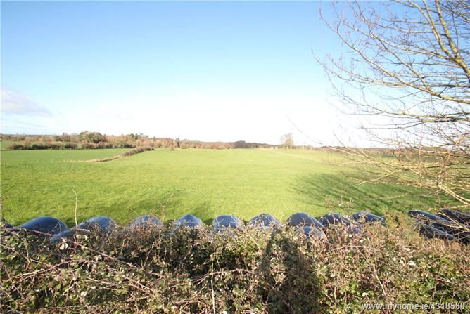 Approx. 2.23 Hectares/5.51 Acres, Busherstown, Moneygall, Birr, Co Offaly