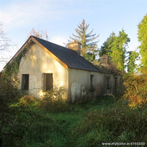 Detached Cottage in Coolistigue, Clonlara, Clare