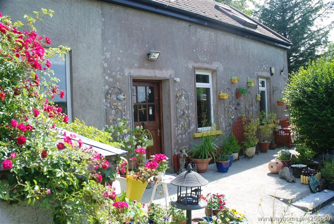 Main image for The Railway Cottage, Skeaghanore West, Ballydehob, Cork