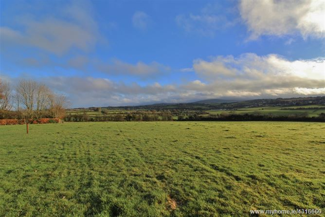 Main image for Land c. 21 Acres/ 8.5 Hectares, Lugatryna, Dunlavin, Wicklow
