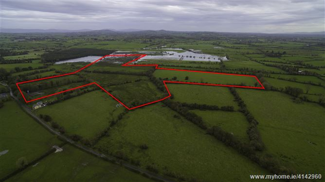 58 Acres of land at Kilcullane, Bruff, Limerick