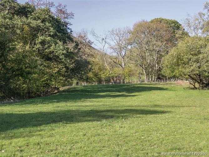 Main image for Dingle Den,Craswall, Herefordshire, United Kingdom
