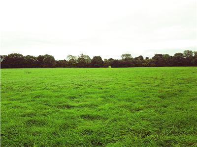 Garriencoona, Effin, Kilmallock, Limerick